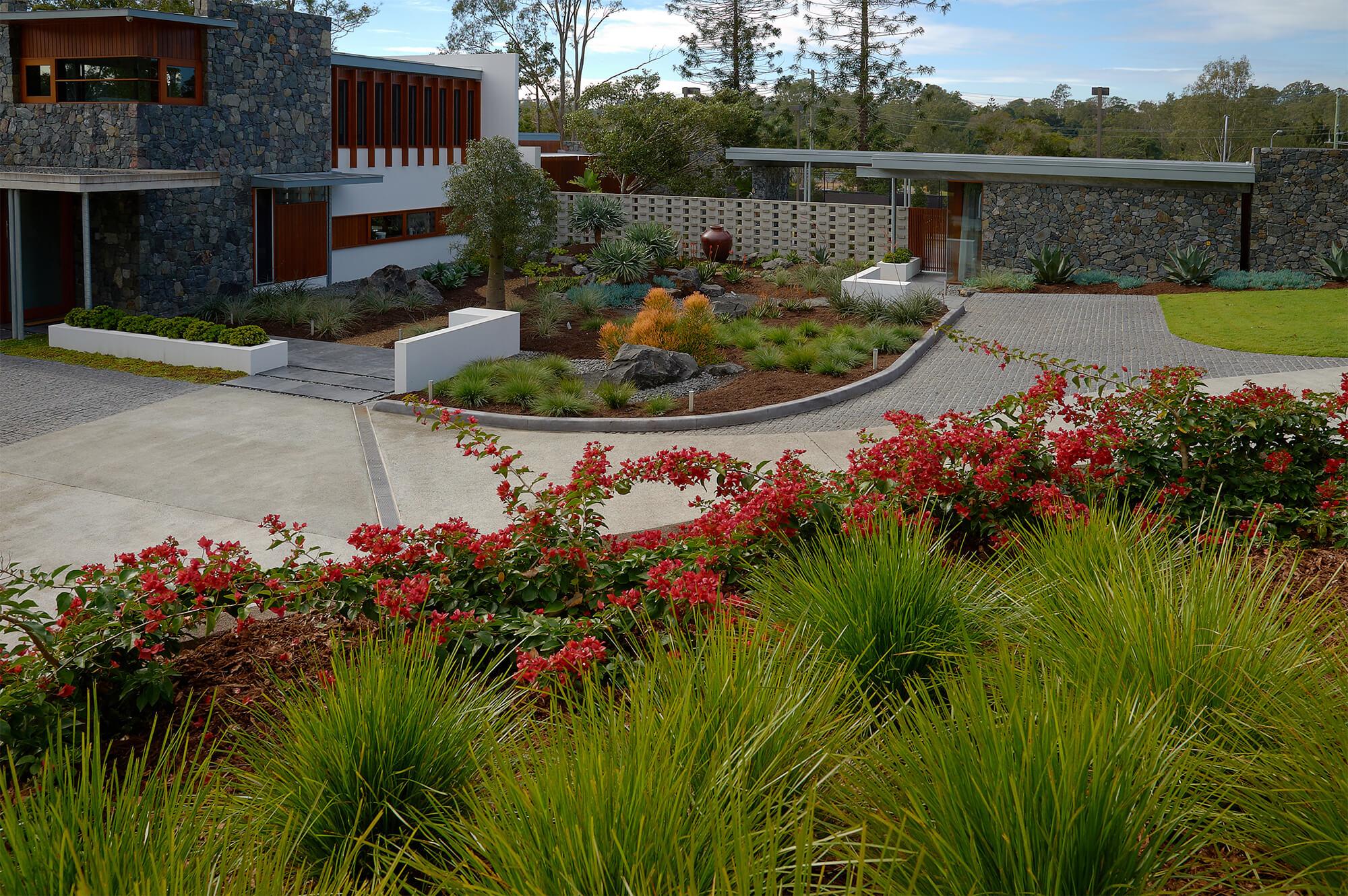 brookfield contemporary arid landscaping entry garden bougainvillea