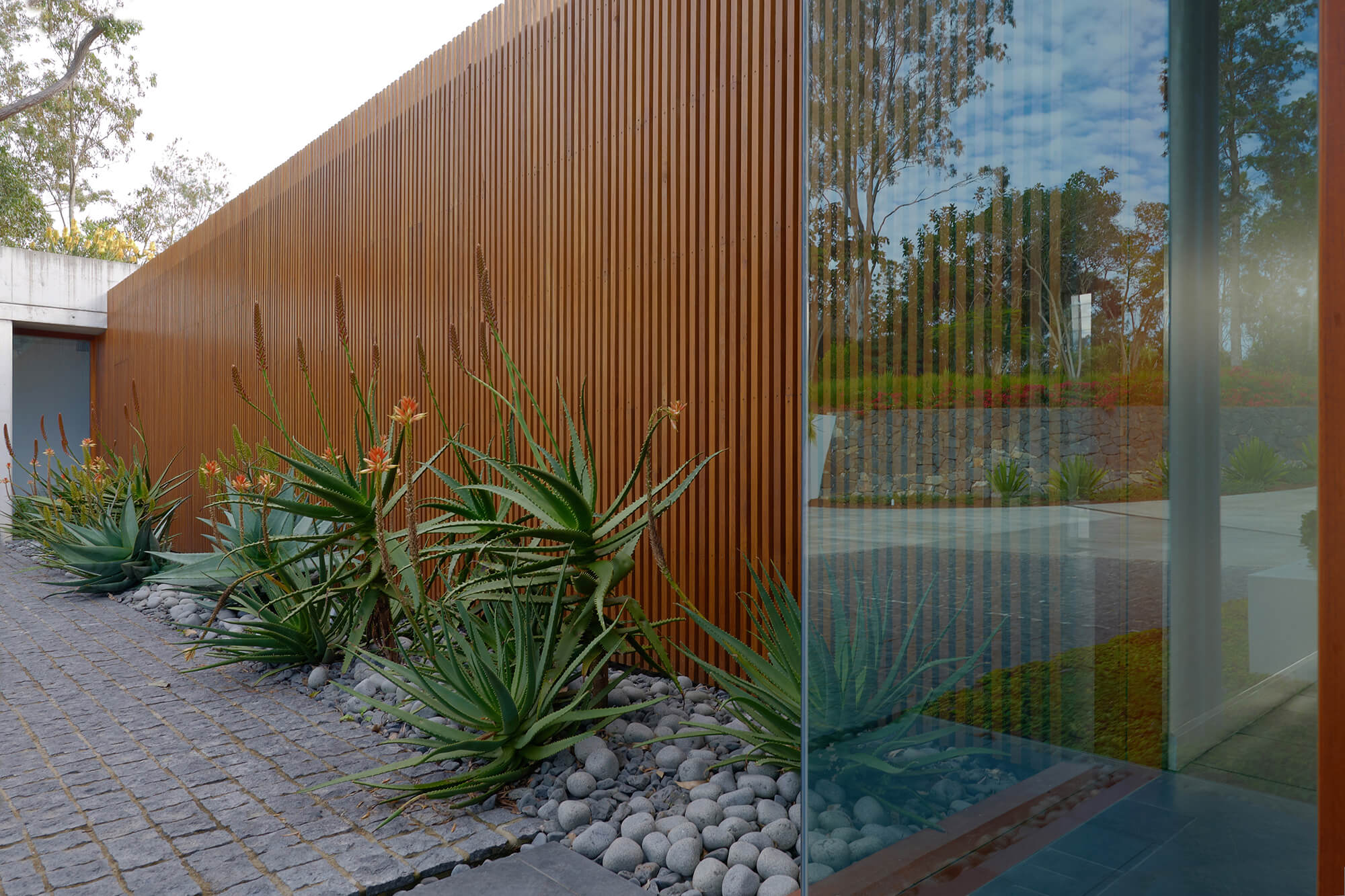brookfield contemporary arid landscaping courtyard aloe flowering