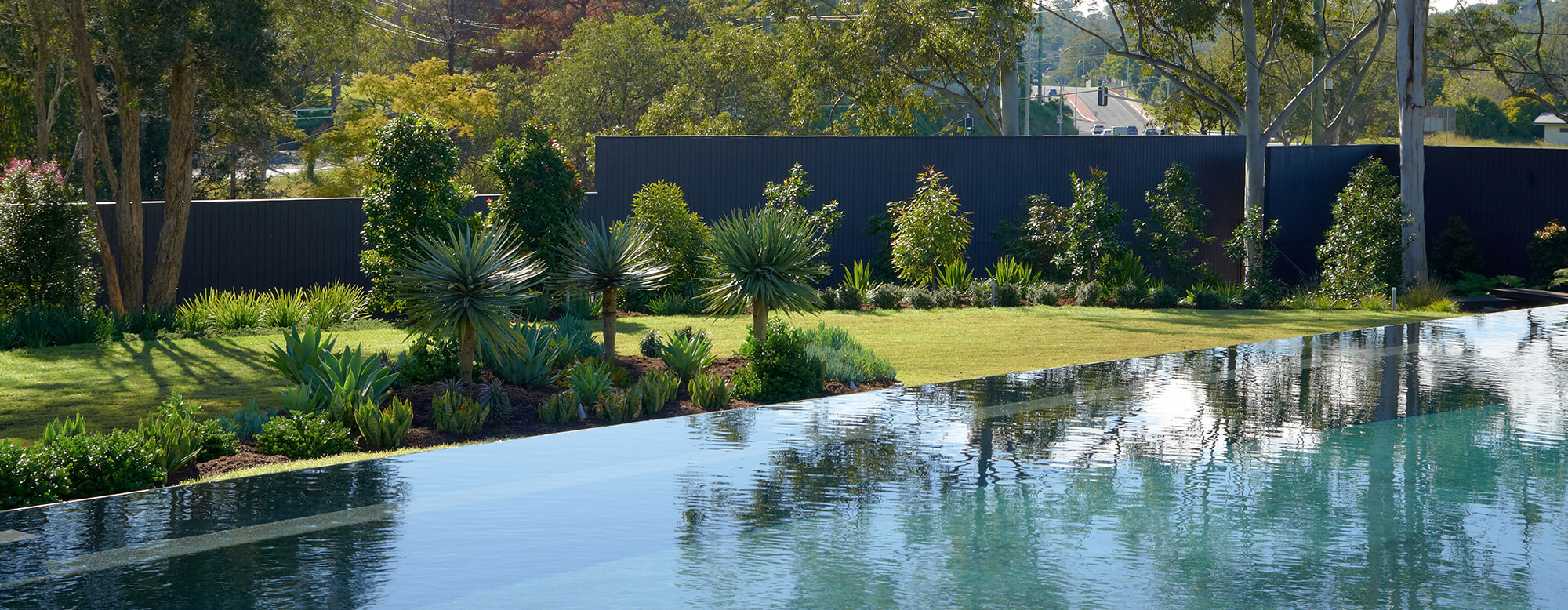 brookfield contemporary arid landscaping pool landscaping