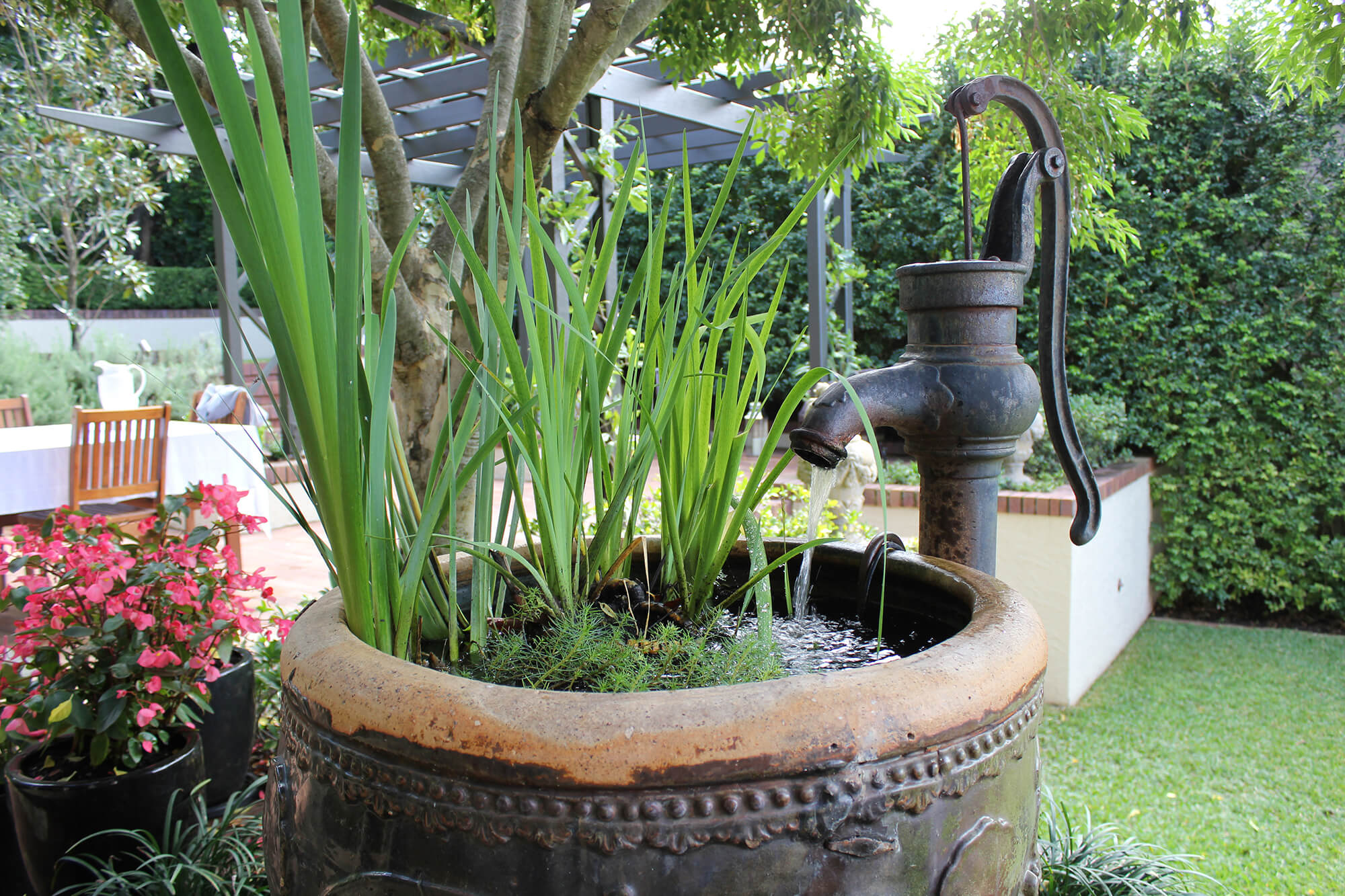 clayfield formal garden water bowl with water plants