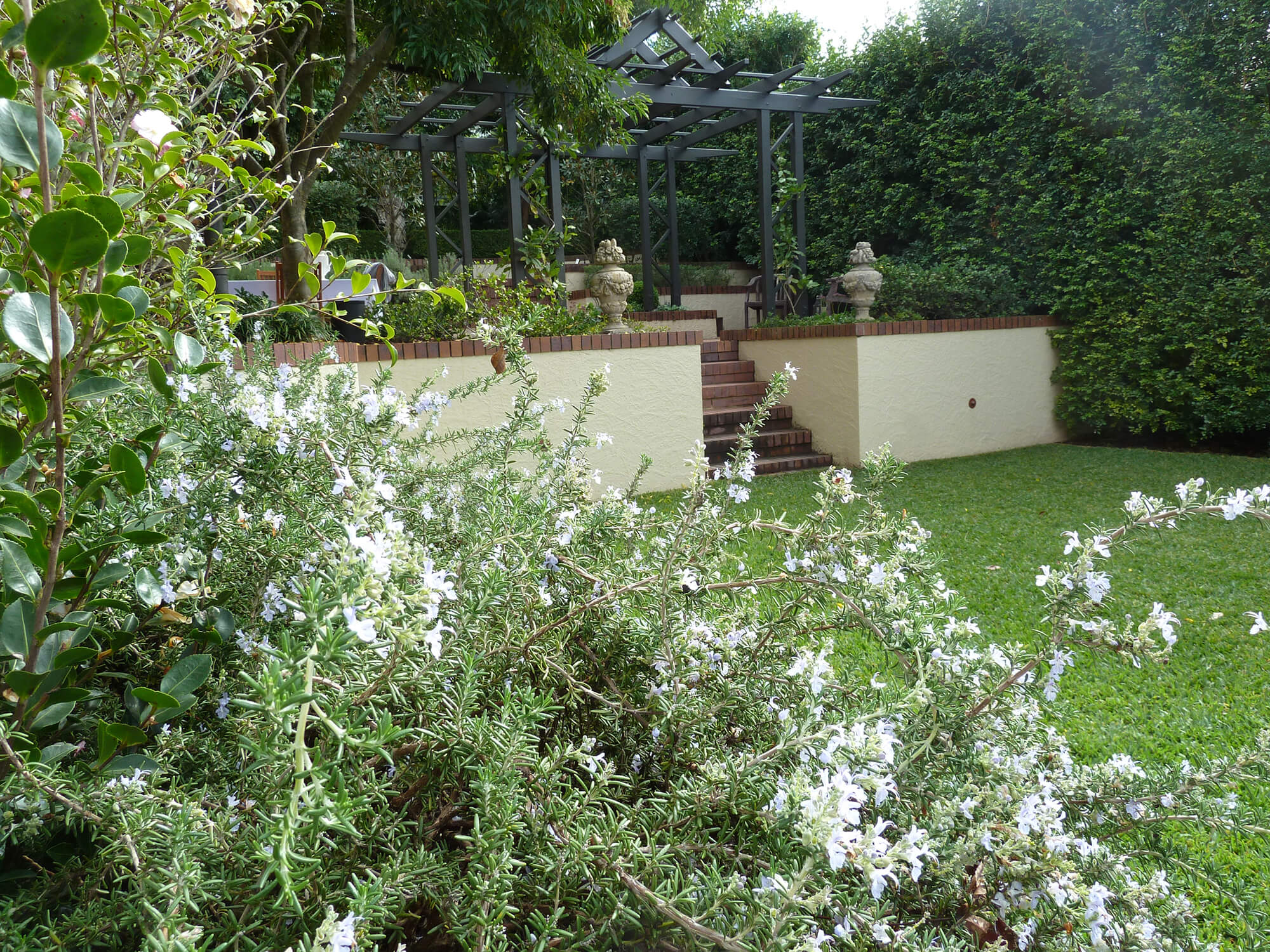 Formal garden design clayfield boss gardenscapes for The garden design team newark