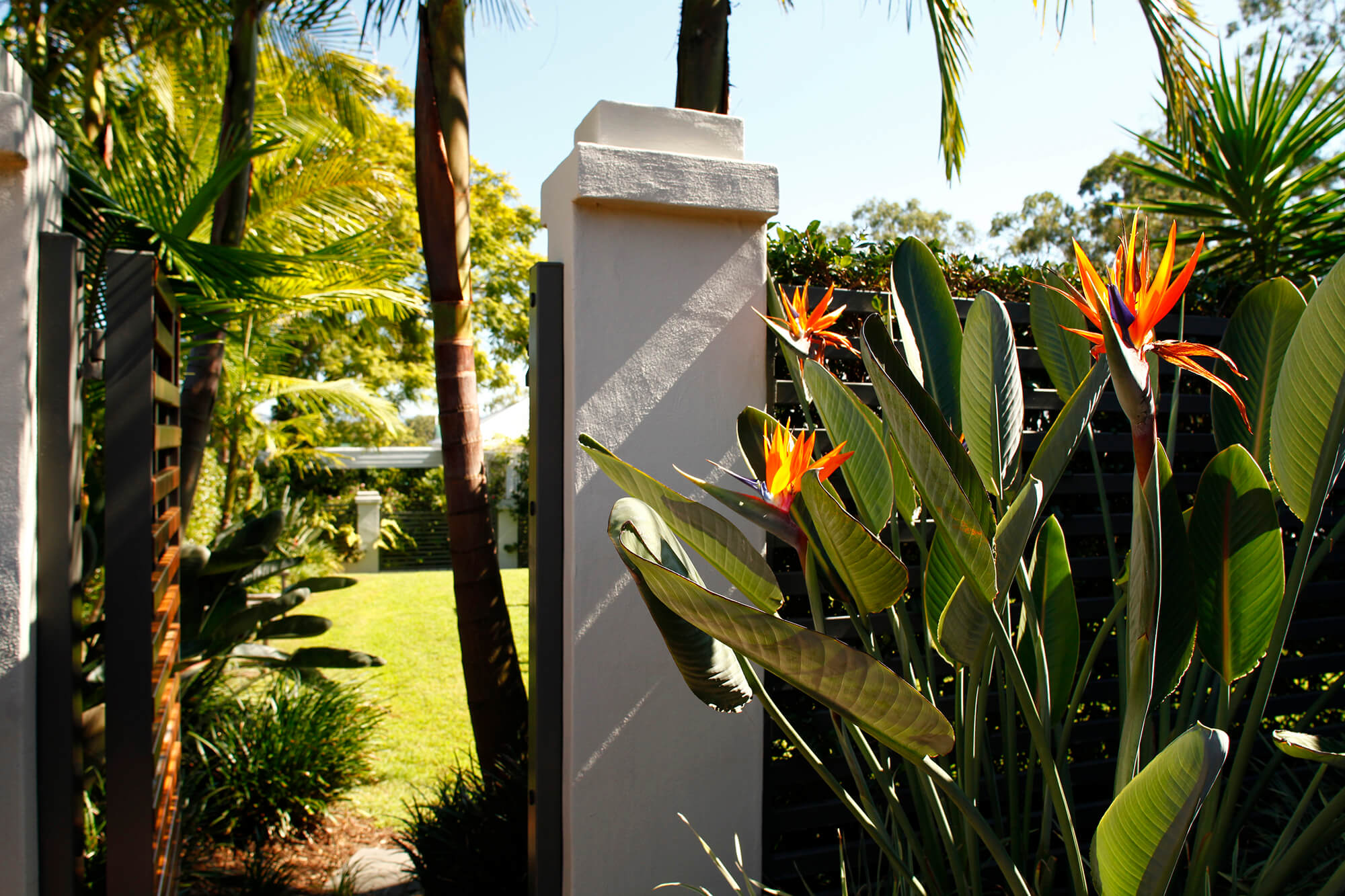 coorparoo tropical gate entry