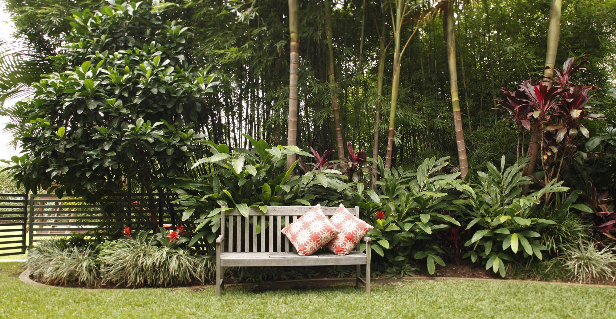 coorparoo tropical garden bench