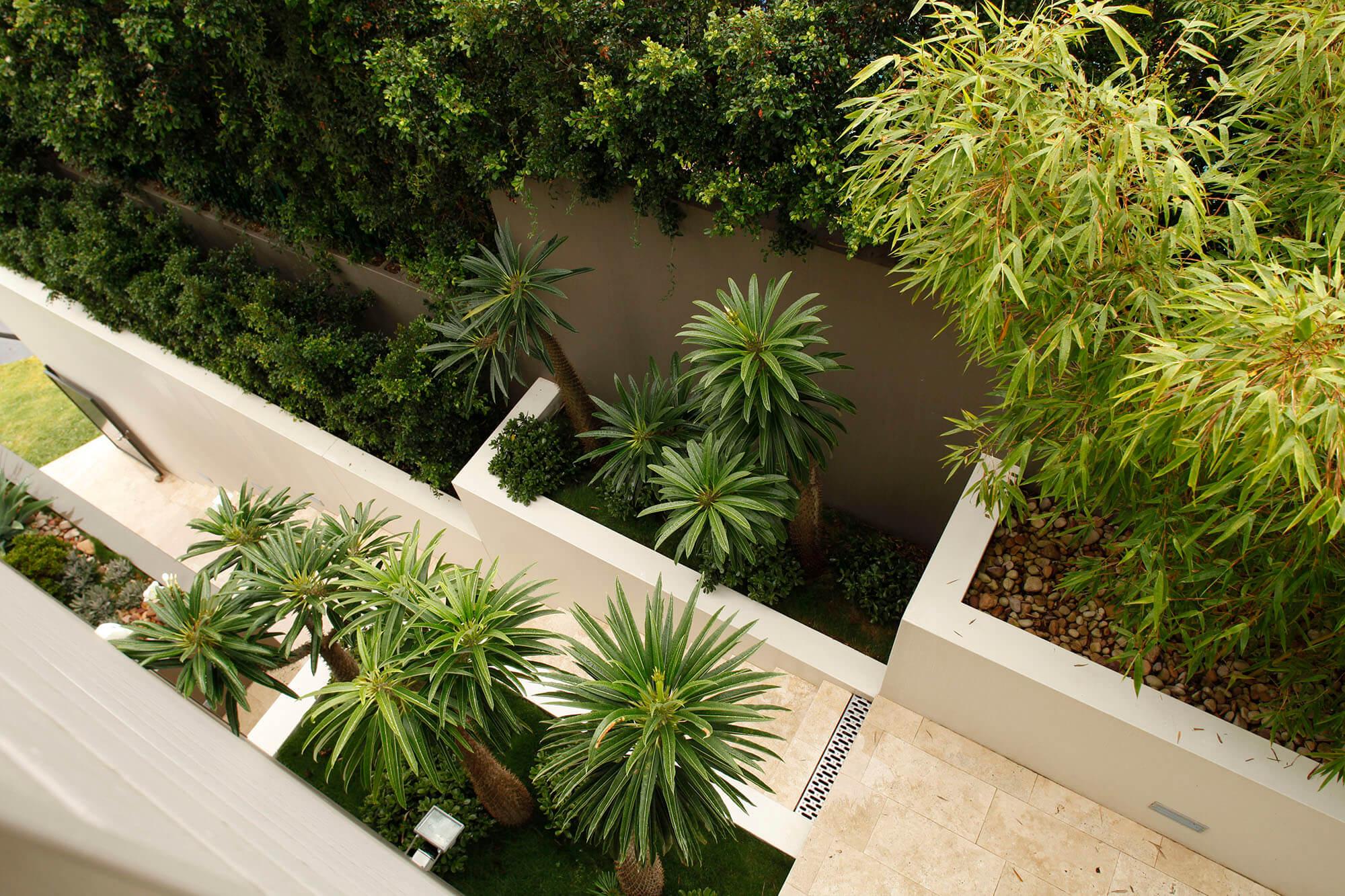 hamilton contemporary terraces