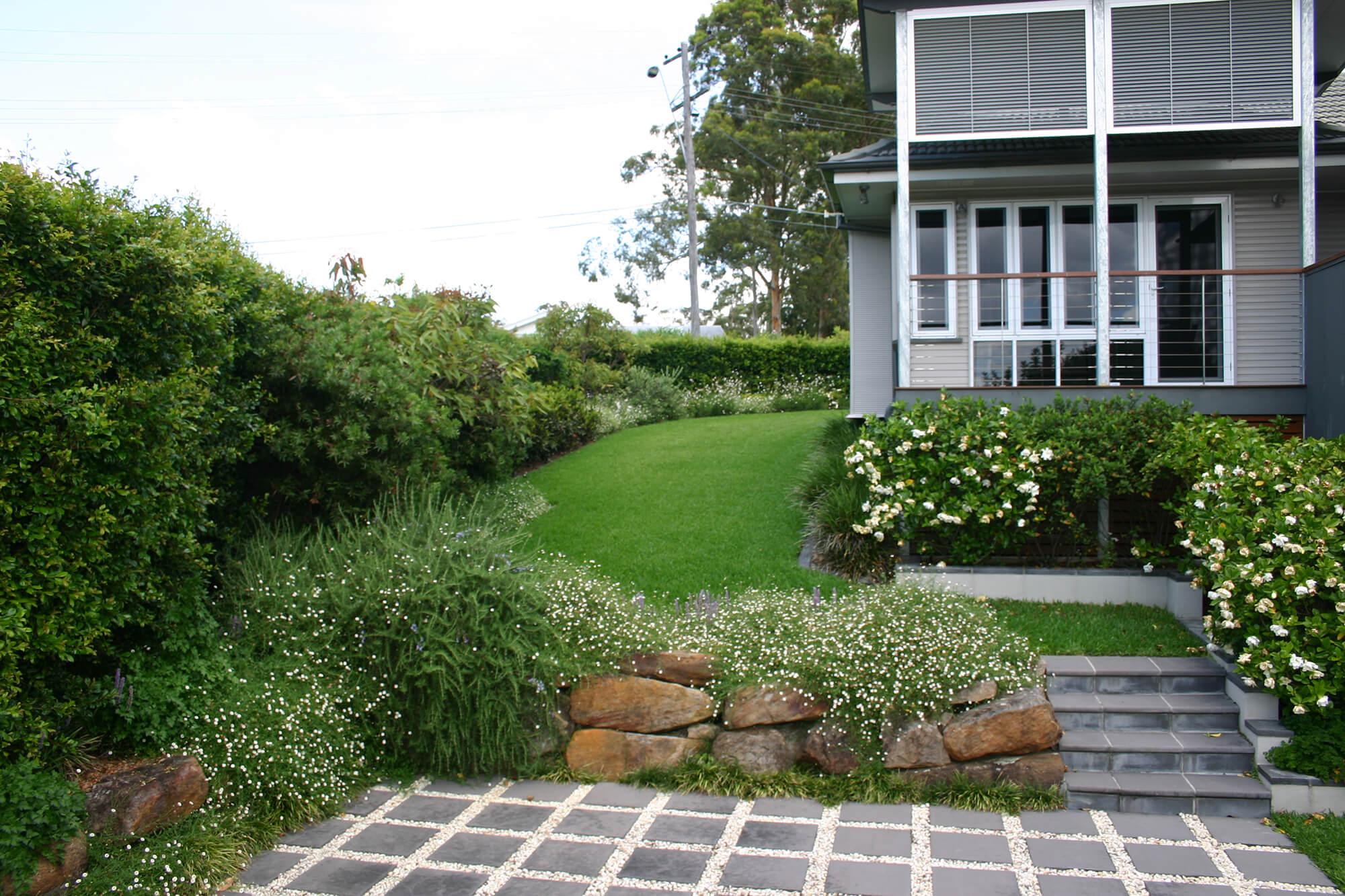 kenmore rejuvenation landscaping