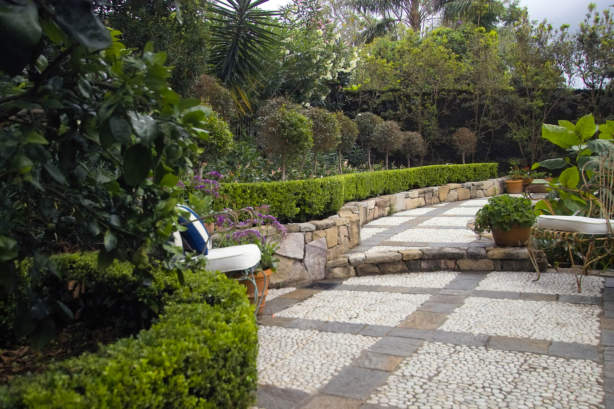 indooroopilly french provincial path and topiaries