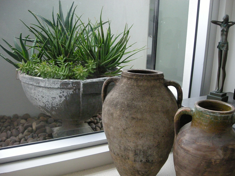 new farm apartment succulents in pot