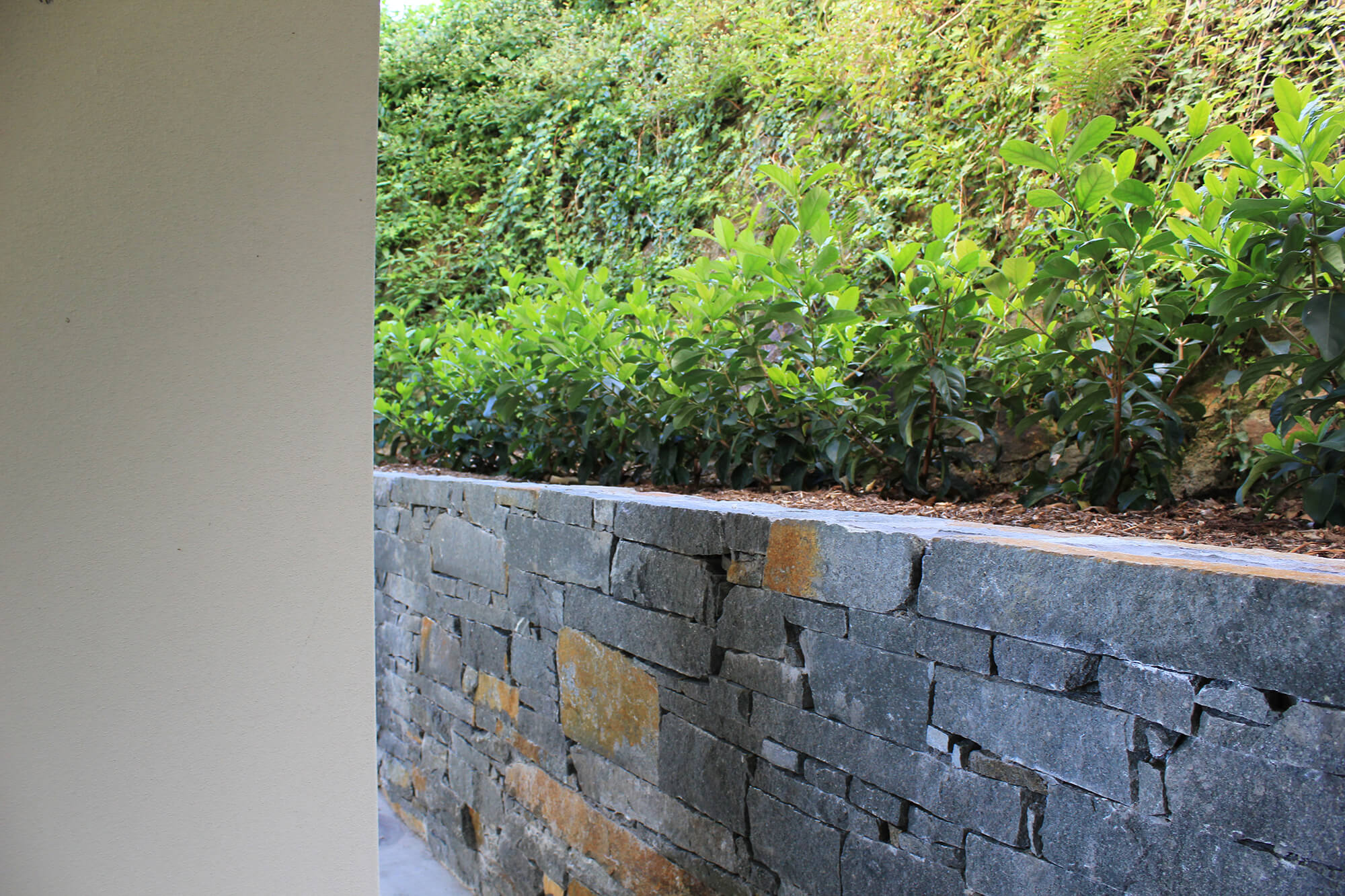 ascot stacked blue stone wall and low maintenance plants