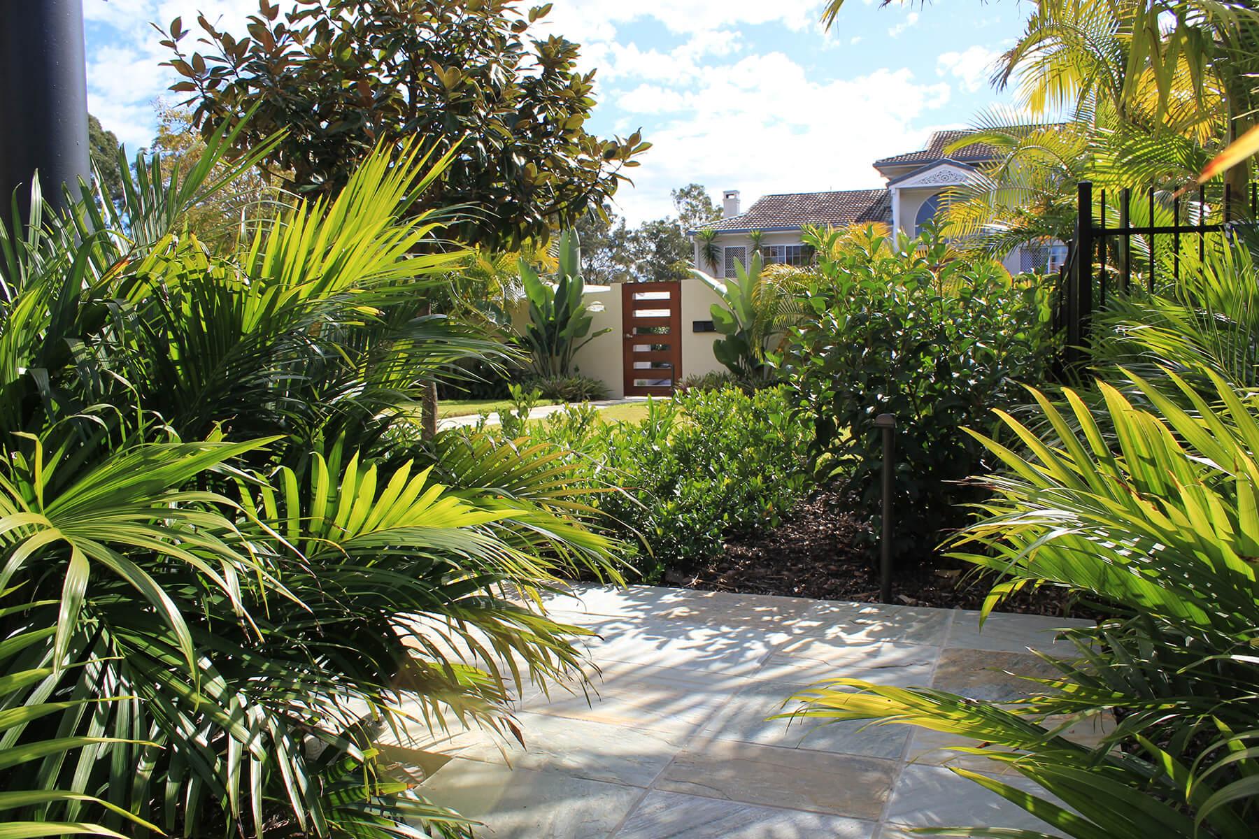 chapel hill tropical landscape