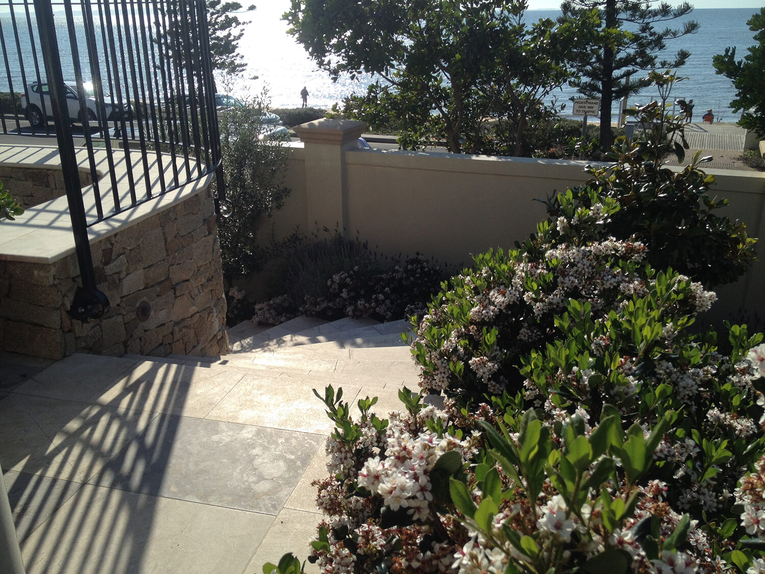 redcliffe landscaping rhaphiolepis surrounding sandstone steps