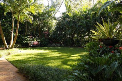 Tropical garden oasis featuring a bench Strelitzia reginae Palms Sacred Bamboo Bromeliads and a feature bowl containing Furcraea foetida